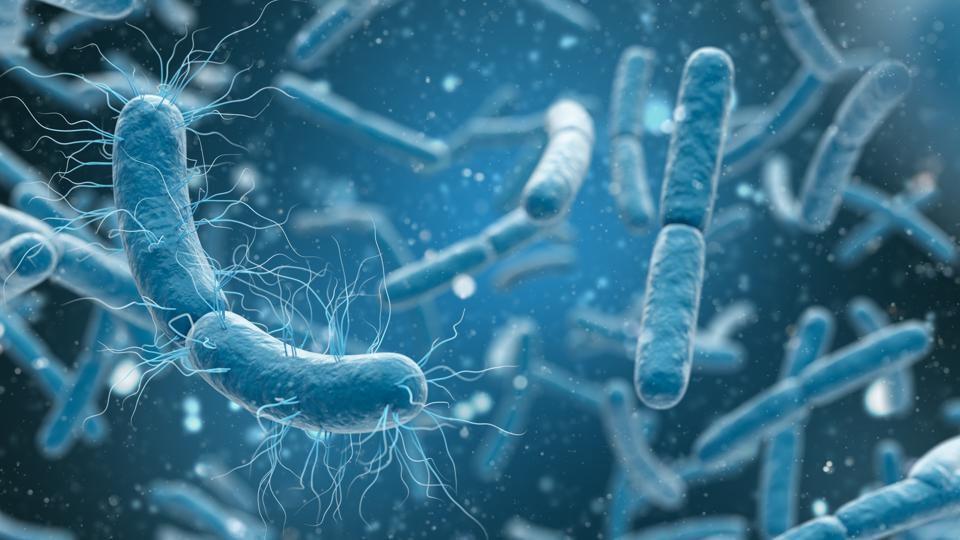 Cilvēka zarnās atrasti 70 tūkstoši iepriekš nezināmu vīrusu