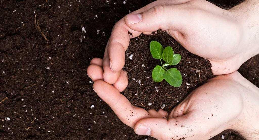 Kura kūdra ir vislabākā dārza darbiem?