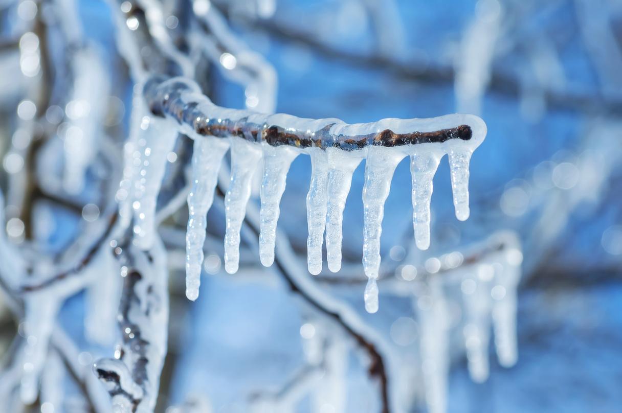 Latvijā vakarpusē gaidāms līdz pat -25 grādu sals