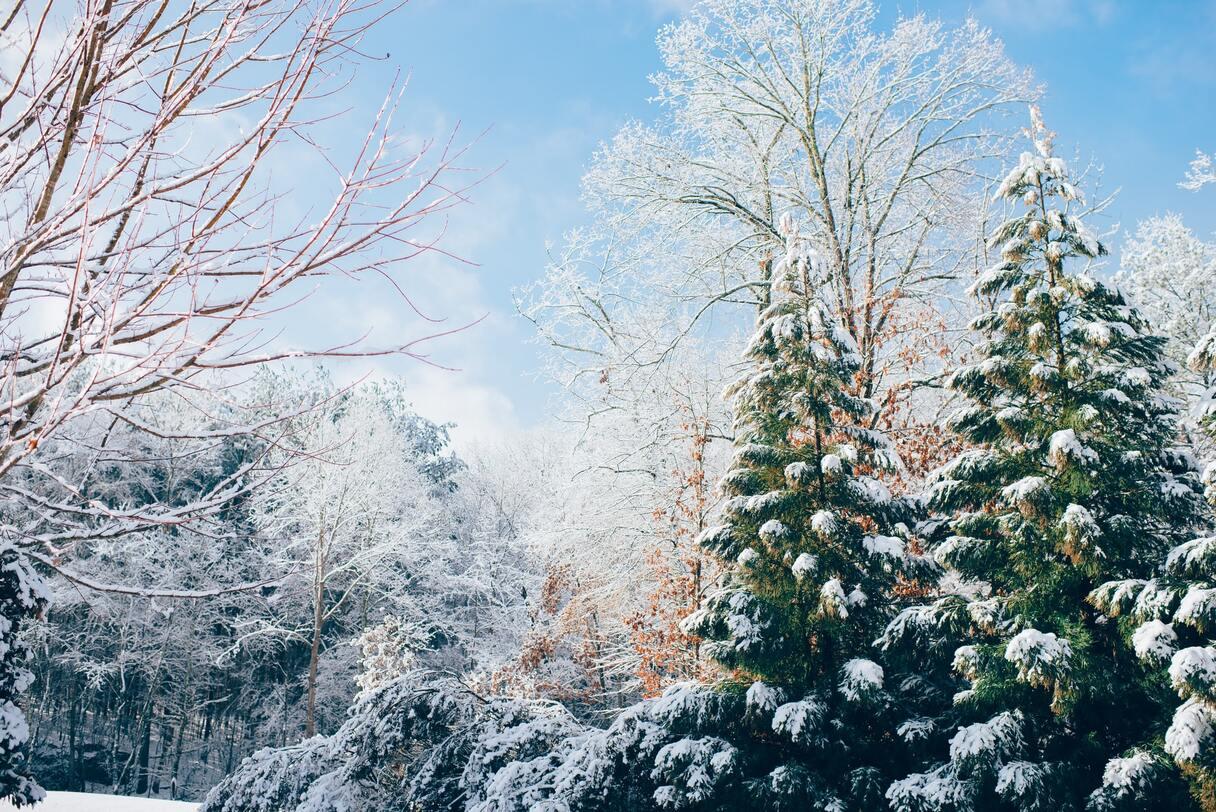 Naktī Valkā gaisa temperatūra pazeminājusies līdz -13 grādiem