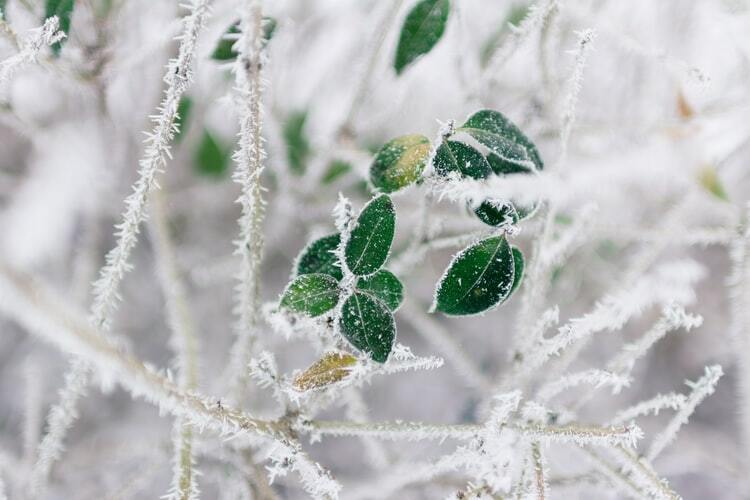 Jaunākā laika prognoze šai nedēļai! Vai atkal sagaidāms aukstums?